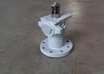 Steam inlet valve
